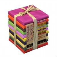 François Pralus - Schokoladen-Pyramide aus 10 dunklen Schokoladen